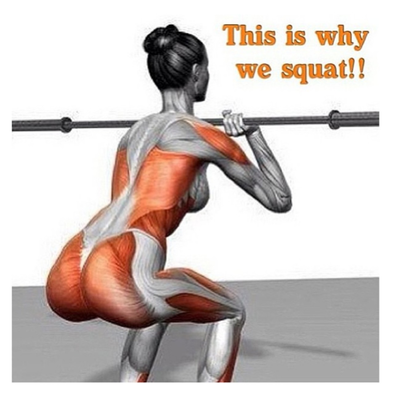 this-is-why-we-squat
